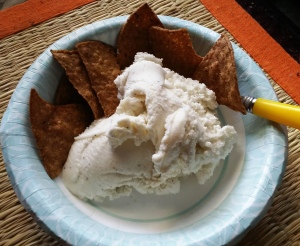 harvest-pumpkin-chips-with-vanilla-ice-cream