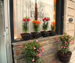 Spring Has Sprung at Flora Restaurant inJenkintown