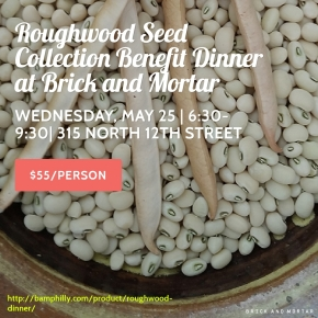 Roughwood Seed Collection Benefit Dinner at Brick and Mortar