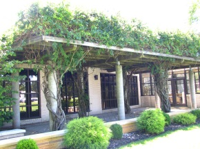 Careme's Restaurant Open for Lunch Featuring Farm-to-TableCuisine