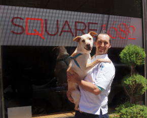 Bring Your Own Dog Brunch Returns to Square 1682