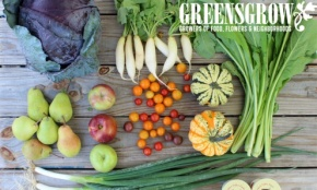 Greensgrow Farms Kickstarts Summer CSA on CSA Day 2018